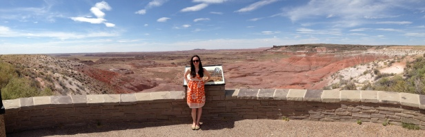 Painted Desert Pose