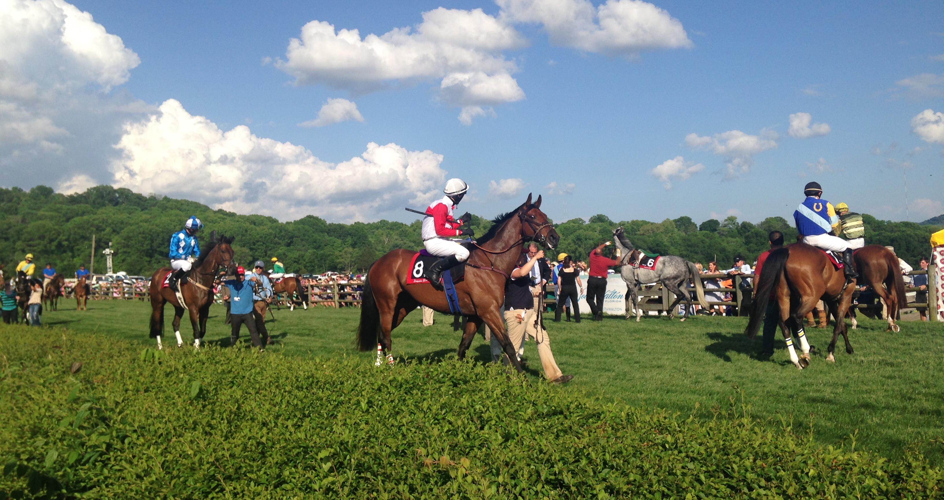Iroquois Steeplechase 52 Things 52 Weeks
