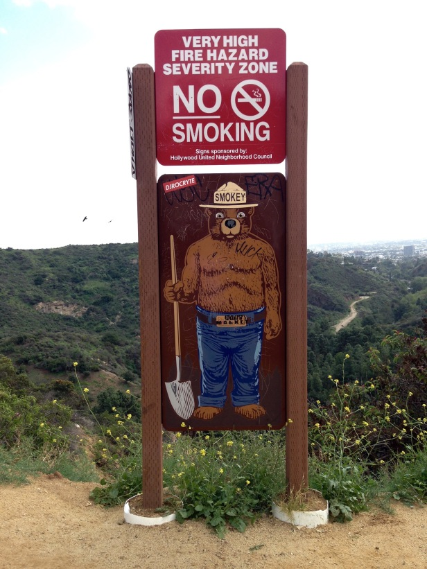 Holly Ridge Trail Smokey the Bear