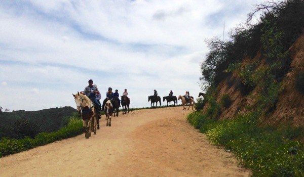 Horseback Riding Hollyridge Trail