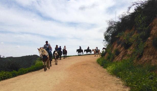 Horseback Riding Hollyridge Trail