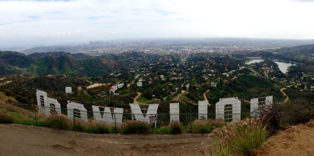 View Behind Hollywood Sign