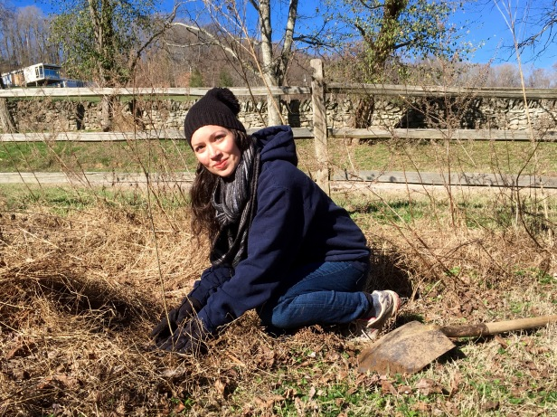 planting-a-tree-2