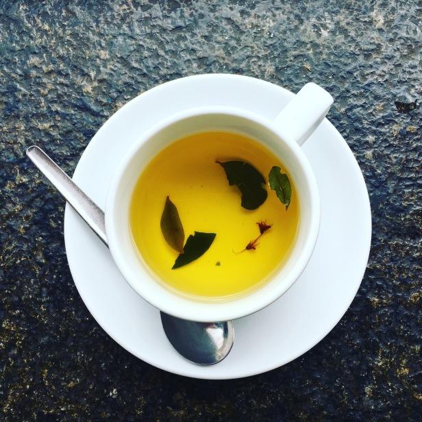 coca tea coca leaf coca