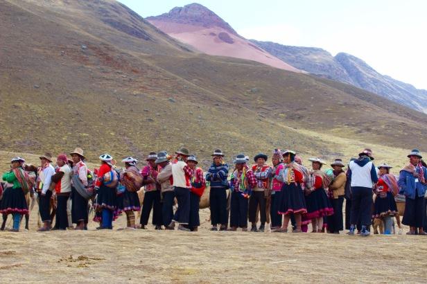 Rainbow Mountain Horses